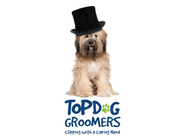 Top Dog Groomers Branding